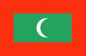 Туры на Мальдивы флаг