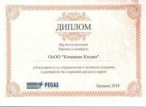 Pegasus Touristik Диплом