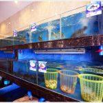 Yin Yun Seaview Hotel - Галерея 14