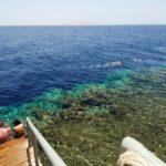 Тур в Шарм-эль-Шейх | Rehana Royal Beach Aquapark 5* - Галерея 7