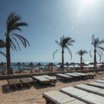 Тур в Египет | Sharming Inn 4* - Галерея 3