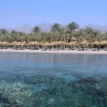 Шарм-эль-Шейх | Sharm Dreams (ex. Hilton) 5* - Галерея 6