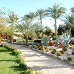 Египет | Nubian Village Aqua 5* - Галерея 8