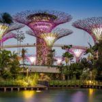 Сингапур + Куала Лумпур | Bintan Lagoon Resort 5* - Галерея 10