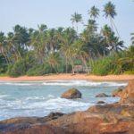Майские праздники на Шри Ланке | Induruwa Beach 3* - Галерея 7