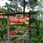 Ко Чанг + Бангкок | Coconut Beach Resort 3* - Галерея 8