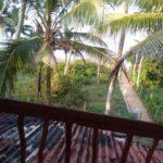 Майские праздники на Шри Ланке | Induruwa Beach 3* - Галерея 0