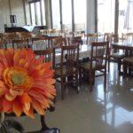 Греция | Metropole Hotel 2* - Галерея 1