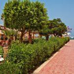 Хургада | Beirut Hotel 3* - Галерея 1