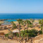 Albatros Citadel Resort. 5* - Галерея 4